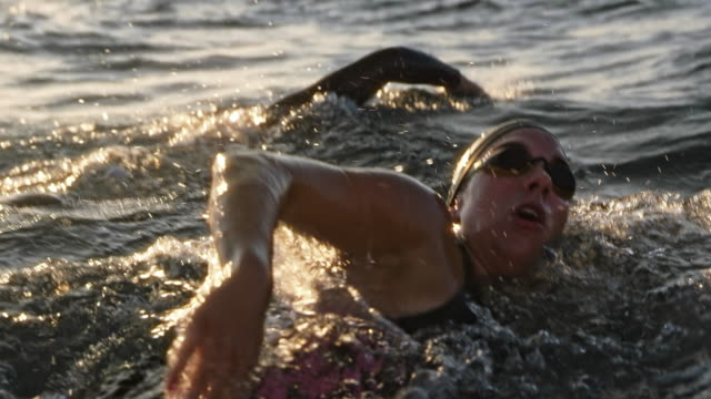 vídeos de stock e filmes b-roll de slo mo couple of open water swimmers swimming front crawl at sea in sunshine - membro humano