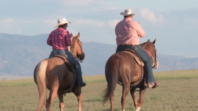 couple of ranchers riding together on a grass plain - rancher stock videos & royalty-free footage