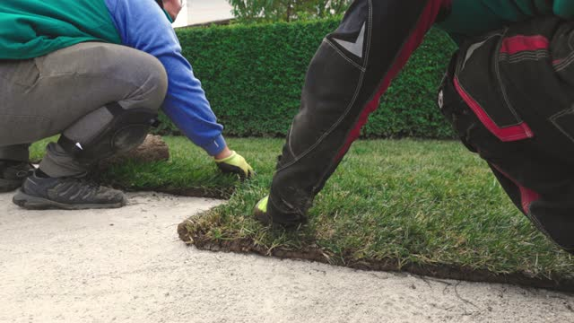 couple of workers installing sod rolls for new lawn - landscaped stock videos & royalty-free footage