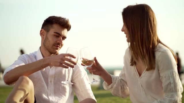 couple on a picnic date - celebratory toast stock videos & royalty-free footage