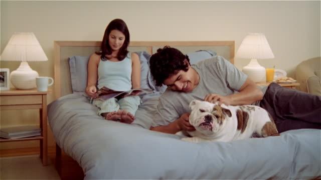 CU, ZO, ZI, Couple on bed, woman reading magazine, man stroking Bulldog