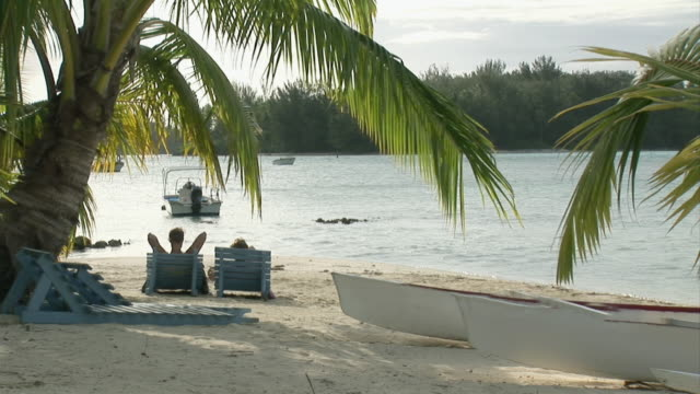 stockvideo's en b-roll-footage met ws, couple on deckchairs facing ocean, rear view, moorea island, tahiti, french polynesia - tahiti
