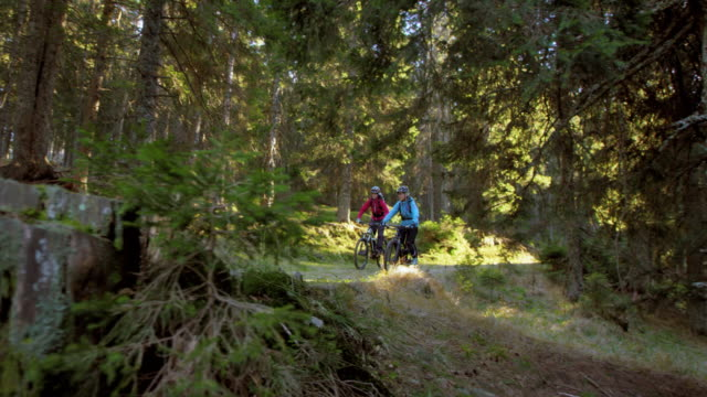 SLO MO Couple on mountain bikes riding down the forest trail in sunshine
