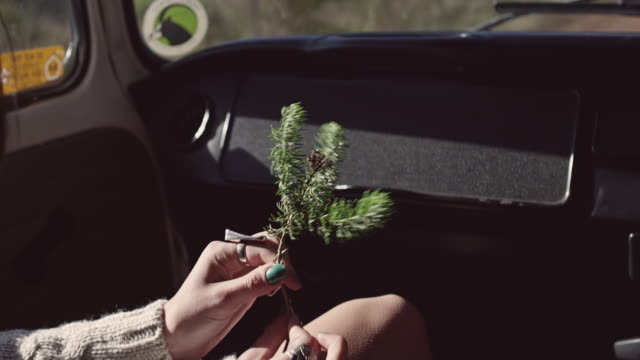 coppia in viaggio su strada - independence video stock e b–roll