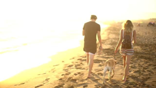 coppia sulla spiaggia  - guinzaglio per animale video stock e b–roll