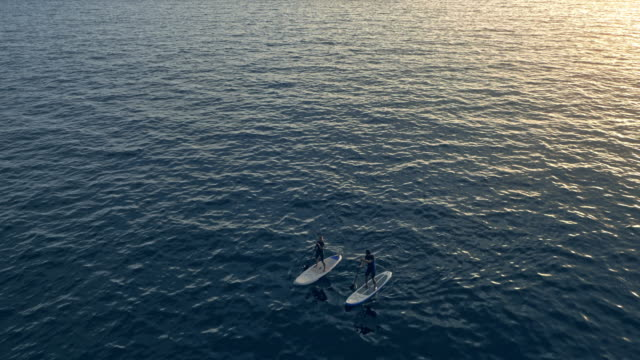 AERIAL paar auf ihrer SUP paddeln an den Strand bei Sonnenuntergang