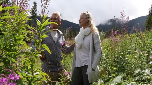 vídeos y material grabado en eventos de stock de pareja de pausa en la ladera de la montaña en flores silvestres - mirar alrededor