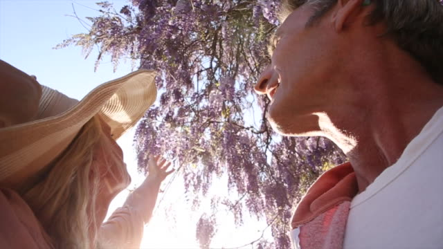 Couple pause under wisteria blossoms, with admiration