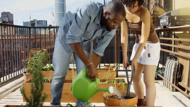 Couple Planting Herbs on Rooftop Garden