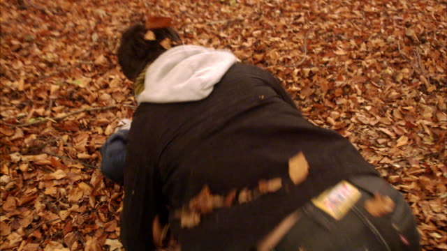 couple playing among the autumn leaves sweden. - mischief stock videos & royalty-free footage