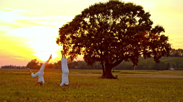 WS Couple practicing headstand yoga exercise