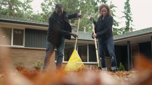 Couple raking leaves in domestic garden, medium shot.