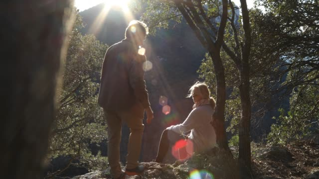 couple relax at valley overlook below trees, then look out - adventure stock videos & royalty-free footage