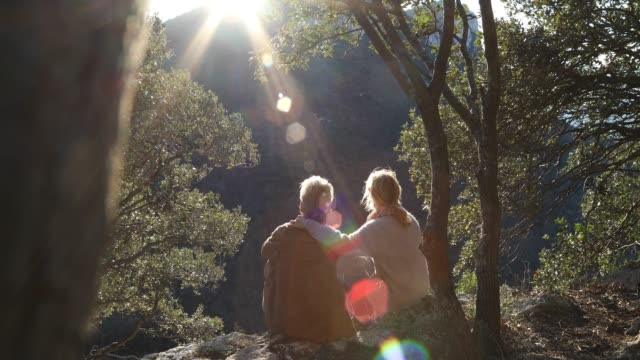 vidéos et rushes de couple relax at valley overlook below trees, then look out - passer le bras autour