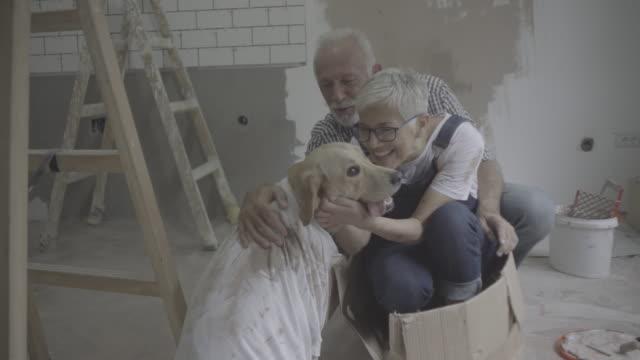 vídeos de stock e filmes b-roll de couple remodeling their home - cabelo branco