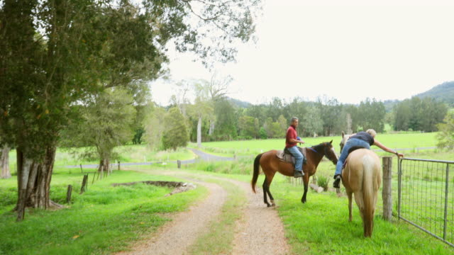 couple riding horses down a dirt road - all horse riding stock videos & royalty-free footage