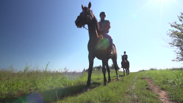 vidéos et rushes de couple riding horses on rural path - animaux au travail