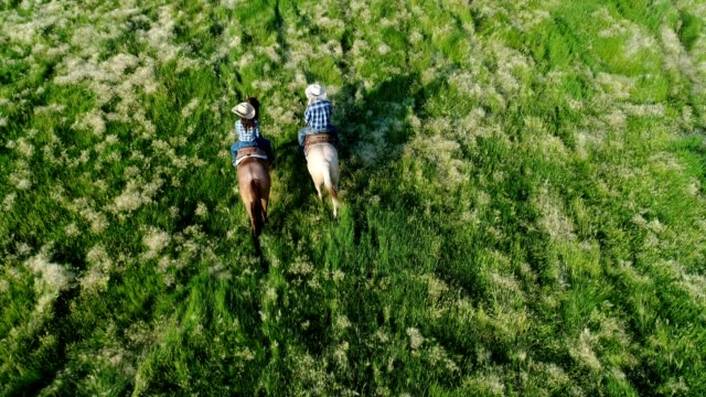 couple riding horses - cultura americana video stock e b–roll