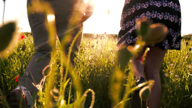 slo mo couple running in the poppy field - back lit flower stock videos & royalty-free footage