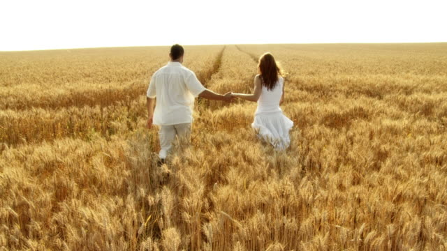HD SLOW-MOTION: Couple Running In Wheat