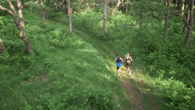 aerial couple running on a path through the forest - forest stock videos & royalty-free footage