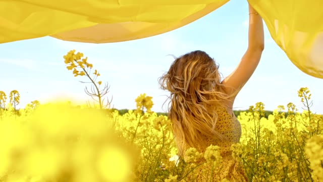 slo mo couple running with a shawl among canola flowers - sheet stock videos & royalty-free footage