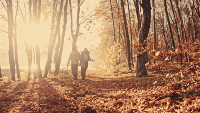 SLO MO Couple scattering leaves over themselves in the forest