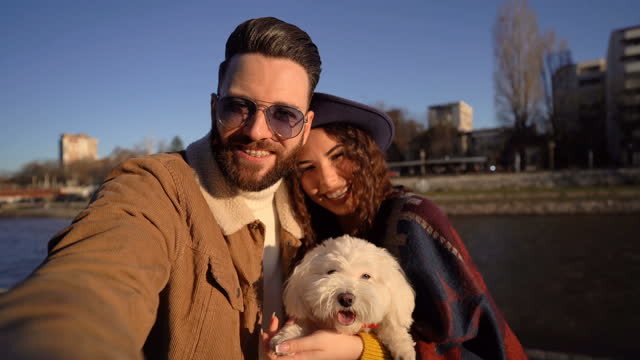couple selfie with a dog - dating stock videos & royalty-free footage