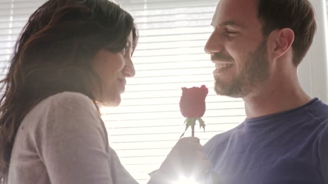 couple sharing a romantic moment on valentine's day - single rose stock videos & royalty-free footage