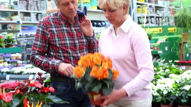 couple shopping in a flower shop - flower shop stock videos and b-roll footage