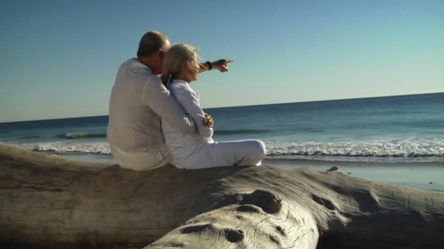 SLO MO MS Couple sitting on log and looking out at ocean/ Sycamore Cove, California