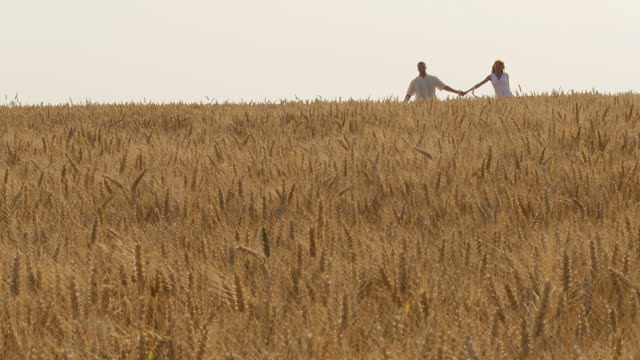HD DOLLY: Couple Skipping in Wheat Field