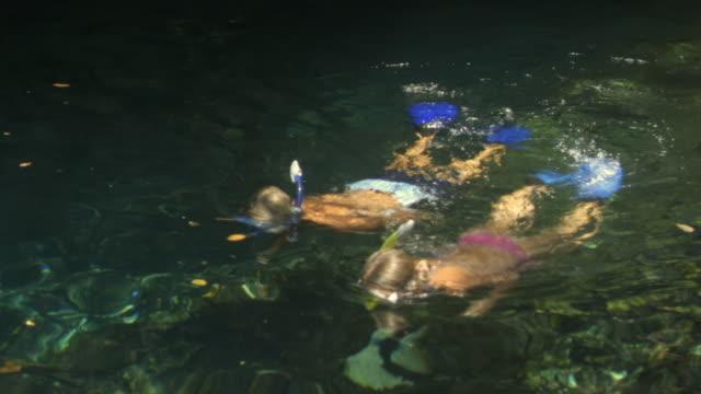 vídeos de stock e filmes b-roll de ms couple snorkeling in cave/ tulum, mexico - cara para baixo