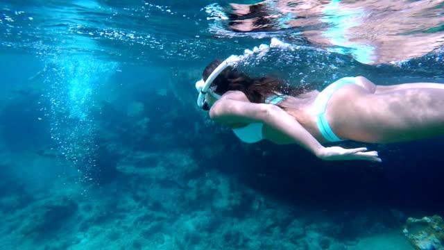 paar snorkelen op het rif in Virgin Gorda