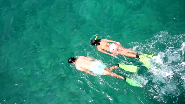 couple snorkeling - caribbean sea stock videos & royalty-free footage