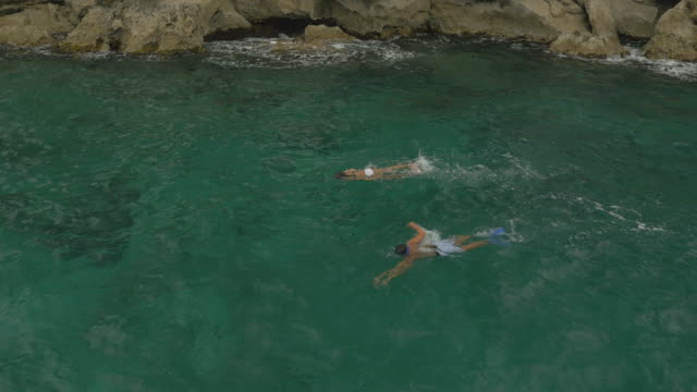 couple snorkelling in warm ocean - kauai stock videos and b-roll footage
