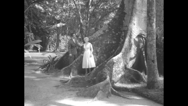 Couple standing under giant tree / woman modeling white cocktail dress man wearing suit and tie / Note exact day not known
