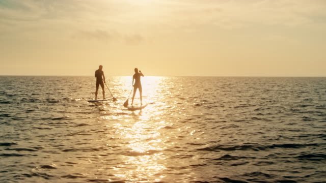 couple standup paddling into the sunset - pagaiare video stock e b–roll