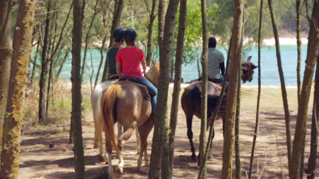couple takes a guided horseback ride along ocean - turtle bay hawaii stock videos & royalty-free footage