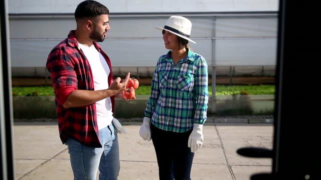 vídeos y material grabado en eventos de stock de pareja hablando sobre calidad de tomate orgánicos - accesorio de cabeza