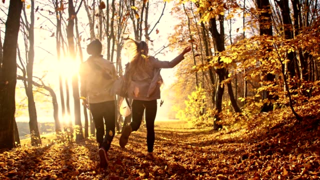 slo mo couple throwing leaves over themselves - autumn stock videos & royalty-free footage