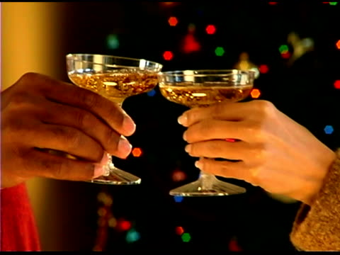 couple toasting champagne - see other clips from this shoot 1407 stock videos and b-roll footage