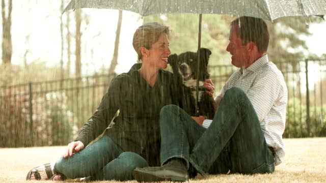 coppia sotto l'ombrello sotto la pioggia con cane - ombrello video stock e b–roll