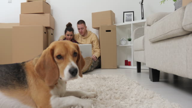 Couple unpacks boxes in new home...