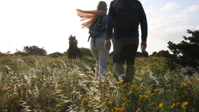 couple  walk along meadow ridgecrest on windy day - gemeinsam gehen stock-videos und b-roll-filmmaterial
