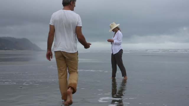 vídeos y material grabado en eventos de stock de couple walk along tidal flat on misty day, beachcombing - camiseta