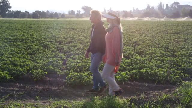 vídeos y material grabado en eventos de stock de pareja a pie al lado de campos rurales después de la salida del sol - pareja madura