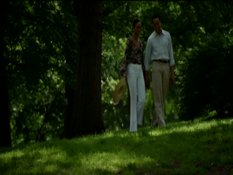 couple walk hand in hand talking and laughing in central park, new york - gemeinsam gehen stock-videos und b-roll-filmmaterial