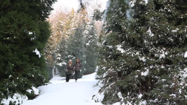 vídeos de stock, filmes e b-roll de couple walk through deep snow in conifer forest, take picture - mitten
