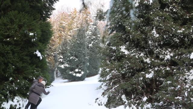 vídeos de stock, filmes e b-roll de couple walk through deep snow in conifer forest - mitten
